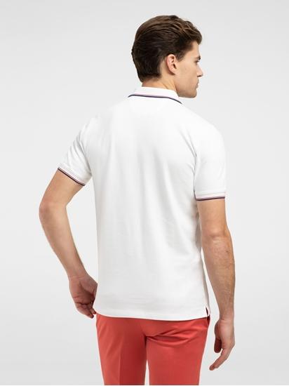 Bild von Polo Shirt im Custom Fit aus Piqué