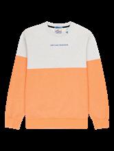 Bild von Sweatshirt in Colourblock-Optik