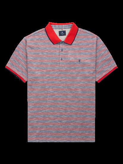 Bild von Polo-Shirt mit Streifen