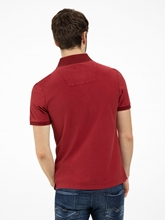 Bild von Polo-Shirt aus Piqué mit Stickerei