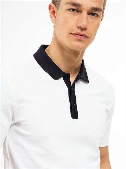 Image sur Polo-Shirt im Regular Fit mit Kontrast-Kragen und Struktur