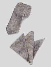 Bild von Set aus Krawatte und Pochette