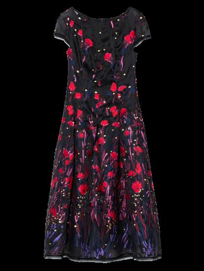 Image sur Robe de soirée avec broderies fleurs