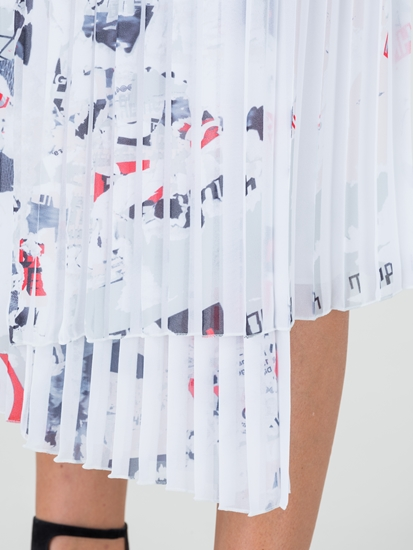 Image sur Jupe plissée imprimée