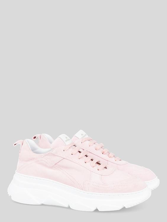 Image sur Sneaker